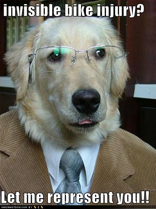 funny-dog-pictures-dog-lawyer-wo-1