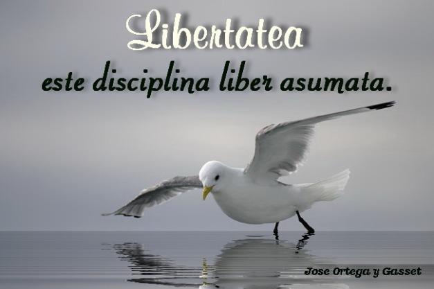 Libertatea liber asumata