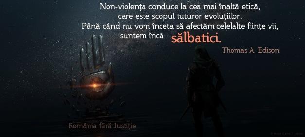 Non-violenta