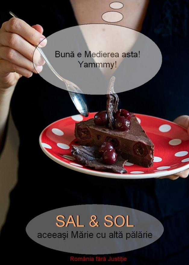 entitati SAL & SOL